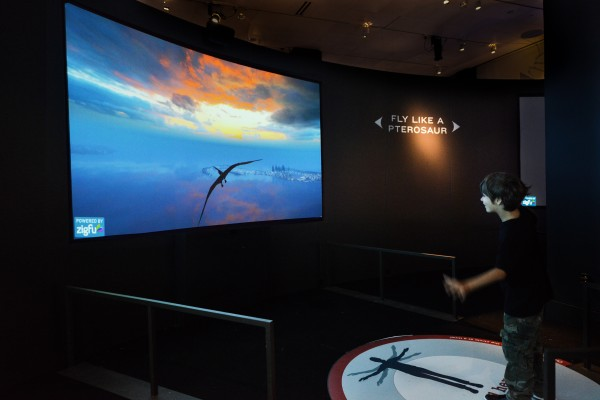 Fly like a pterosaur at the museum!