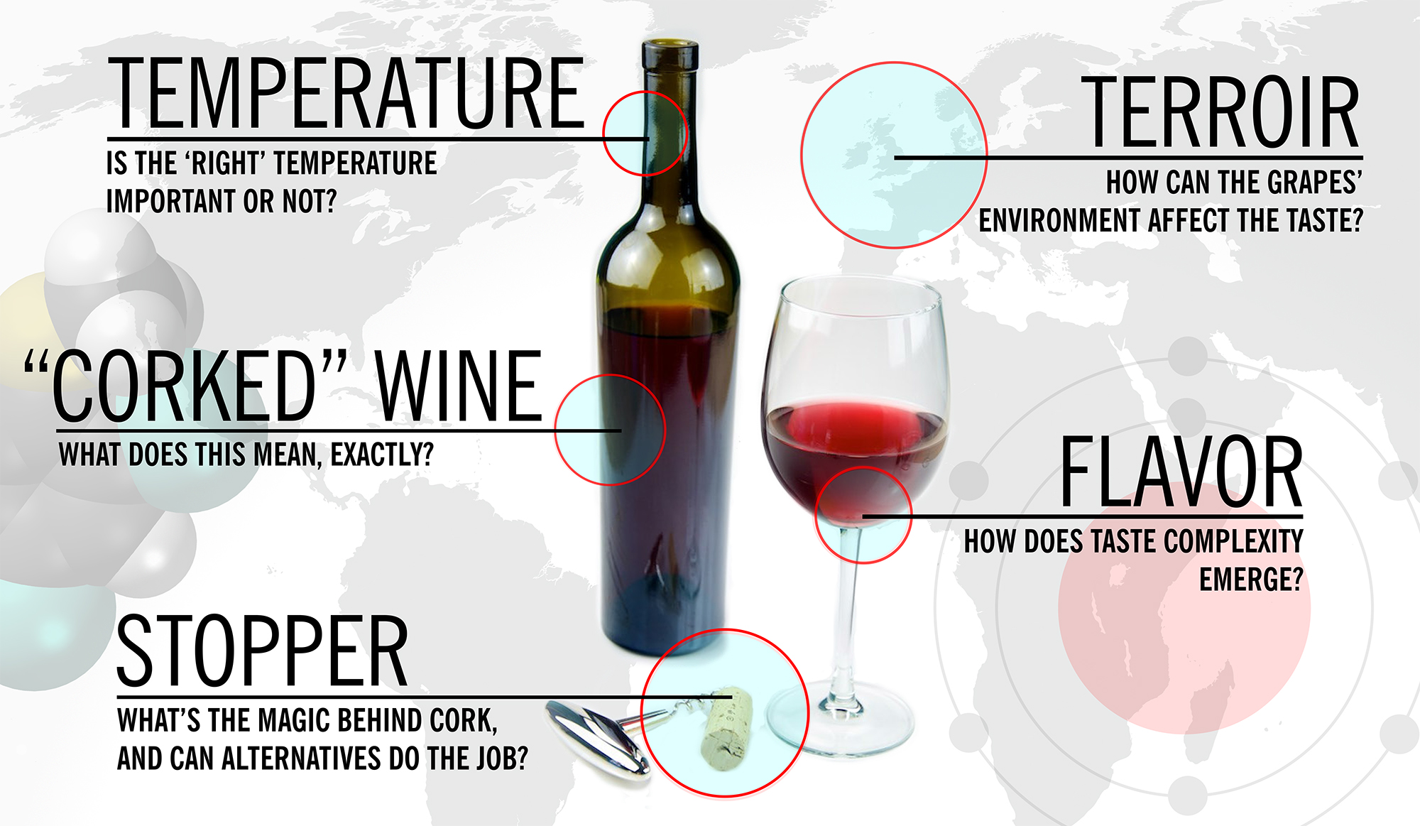 5 Things Worth Knowing About the Science of Wine