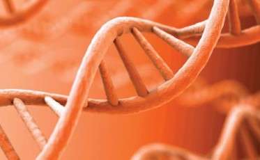 cancers_last_stand_the_genome_solution
