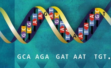 our_global_human_genome