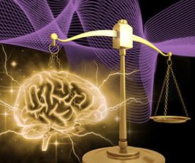 brains_on_trial-275