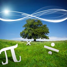 infinity-275