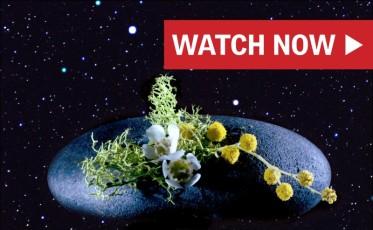 1_Alien Life_Watch Now_800x494_v2