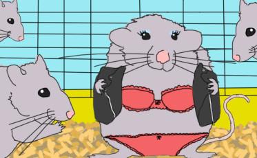 Rat Lingerie_update